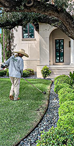 Landscape-Bed-Maintenance-&-Weed-Control