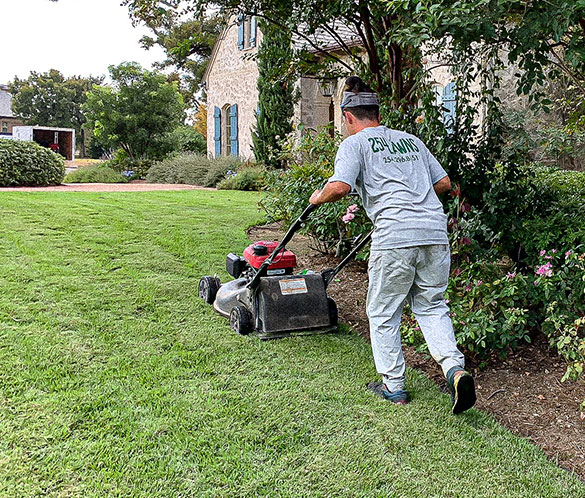 Lawn Mowing Service in Waco TX - 254 Lawns