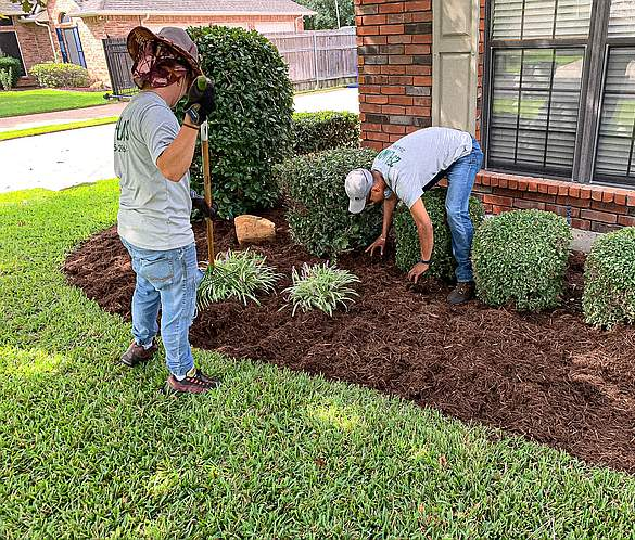 Mulching and Landscape Bed Care
